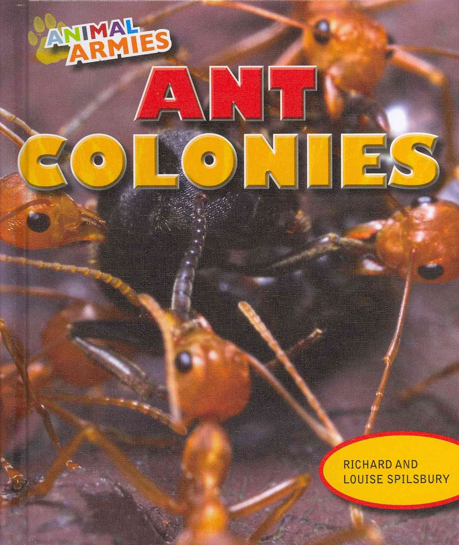Ant Colonies By Spilsbury, Richard/ Spilsbury, Louise
